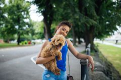 Teenager girl with red poodle stock photo