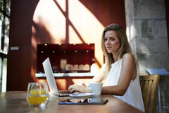 Portrait of a beautiful Sweden woman sitting front open laptop computer in modern coffee shop interior. Attractive female freelancer using net-book for distance Royalty Free Stock Photos