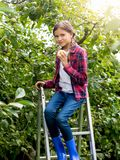 Portrait of beautiful teenage girl sitting on top of stepladder and holding fresh apple. Beautiful teenage girl sitting on top of stepladder and holding fresh Royalty Free Stock Photography