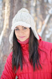 Portrait of beautiful Winter girl Stock Photography