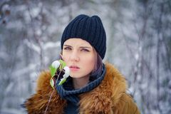 Portrait of a beautiful winter girl. In a forest Royalty Free Stock Photography