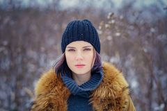 Portrait of a beautiful winter girl Stock Images