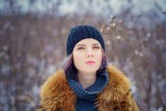 Portrait of a beautiful winter girl Stock Image