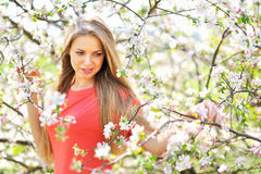 Portrait of a beautiful woman in blooming spring tree Royalty Free Stock Images