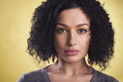 Portrait of a beautiful woman with afro hair. Royalty Free Stock Image