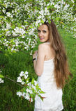 Portrait of beautiful  woman with apple tree flowers Stock Image