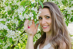 Portrait of beautiful  woman with apple tree flowers. In the  park Royalty Free Stock Images