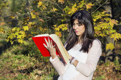 Portrait of a beautiful  woman in the autumn park,holding a book Stock Images