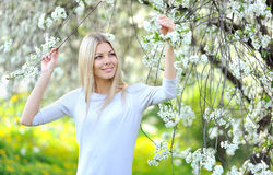 Portrait of beautiful woman in blooming spring tree Stock Photography