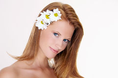 Portrait of beautiful woman with daisy. Portrait of young woman with daisy in hair Royalty Free Stock Photos