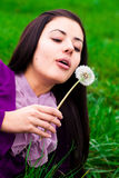 Portrait of a beautiful woman with dandelion Stock Image
