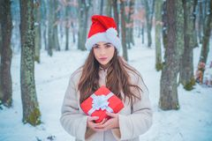 Portrait of a beautiful woman dressed a coat. Beauty Winter Girl in frosty winter Park. Vintage winter person. Enjoying stock photos