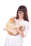 Portrait of a beautiful woman holding red cat Stock Photos