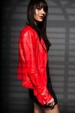 Portrait of beautiful woman model. Fashion photo Stock Image