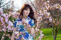 Portrait of beautiful woman posing with sakura flowers in park Stock Photos