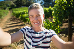 Portrait of beautiful woman posing in vineyard Royalty Free Stock Images