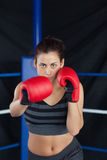 Portrait of a beautiful woman in red boxing gloves Royalty Free Stock Photography