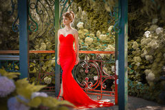 Portrait of beautiful woman in red dress outdoor royalty free stock photo