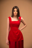 Portrait of a beautiful woman in red dress Royalty Free Stock Image