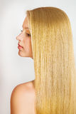 Portrait of Beautiful Woman with smooth gloss long hair. Stock Photo