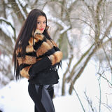 Portrait of a beautiful woman in winter - copyspace Royalty Free Stock Images