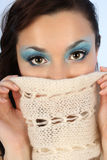 Portrait of beautiful woman with winter make-up Stock Photography