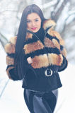 Portrait of a beautiful woman in winter Stock Photography