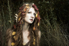 Portrait of the beautiful woman in wood Royalty Free Stock Photos