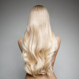 Portrait Of A Beautiful Young Blond Woman With Long Wavy Hair. Portrait Of Beautiful Young Blond Woman With Long Wavy Hair. Back view stock photo