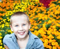 Portrait of beautiful young boy Royalty Free Stock Images