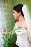 Portrait of beautiful young bride Royalty Free Stock Image