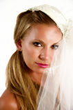 Bridal Portrait. Portrait of a beautiful young bride Royalty Free Stock Photo