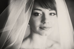 A portrait of beautiful young bride covered with a veil royalty free stock images