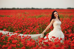 Portrait of beautiful young bride in field full of red poppies Royalty Free Stock Photography