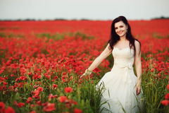 Portrait of beautiful young bride in field full of red poppies Stock Photography