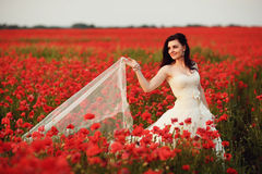 Portrait of beautiful young bride in field full of red poppies Stock Photos