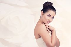 Portrait of beautiful young bride Stock Images