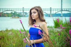 Portrait of beautiful young brunette woman on the meadow near river. Portrait of beautiful young brunette woman, wearing elegant blue dress, standing on a meadow Royalty Free Stock Photo