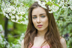 Portrait of beautiful young brunette woman in spring blossom Royalty Free Stock Photo