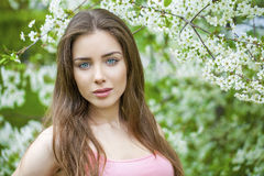 Portrait of beautiful young brunette woman in spring blossom Royalty Free Stock Image