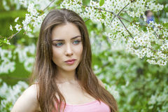 Portrait of beautiful young brunette woman in spring blossom Royalty Free Stock Photos