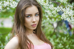 Portrait of beautiful young brunette woman in spring blossom Stock Images