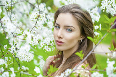 Portrait of beautiful young brunette woman in spring blossom Stock Photography