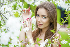 Portrait of beautiful young brunette woman in spring blossom Royalty Free Stock Images