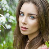 Portrait of beautiful young brunette woman in spring blossom Stock Photos