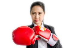 Portrait of beautiful and young business woman wearing boxing gloves. Isolated on the white background Royalty Free Stock Photos