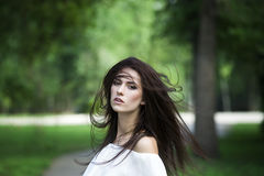 Portrait of a beautiful young caucasian woman with flying long hair, clean skin and casual makeup Stock Photography