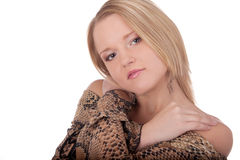 Portrait beautiful young female in studio Royalty Free Stock Image