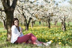 Portrait of beautiful young woman in apple trees blooming park on a sunny day. Smiling girl Happy girl. Happiness royalty free stock images
