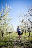 Portrait of beautiful young woman in apple trees blooming park on a sunny day. Smiling girl Happy girl. Happiness stock photos